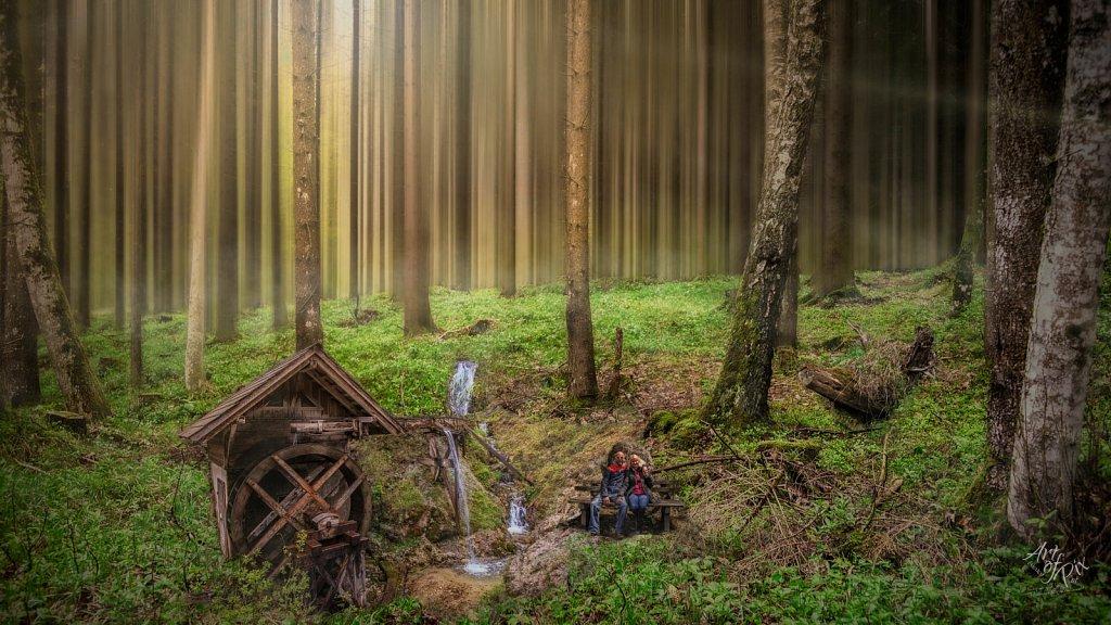 """""""Mystic Wood"""""""